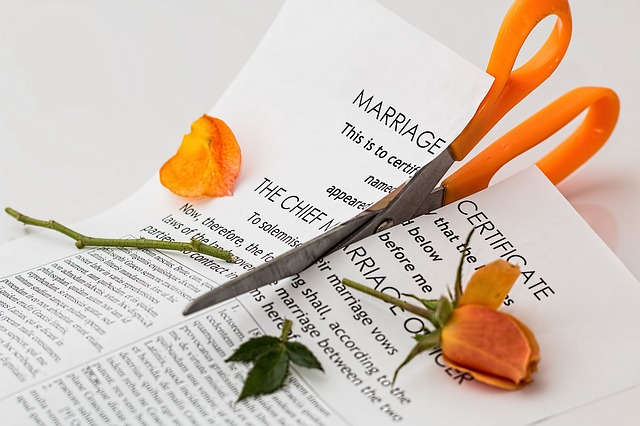 【逆ゲス不倫?】波紋広がる田中直樹と小日向しえの離婚「親権が父親、なるほどね…」