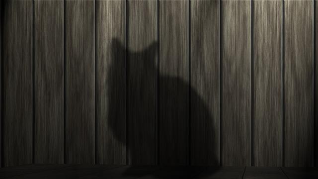 【レッドヘアの衝撃】猫13匹を虐待し埋めた竹澤絵利香容疑者に「顔からしていかにも…」